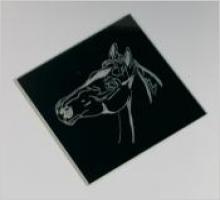Spiegel handgegraveerd paardenhoofd 9,95 euro